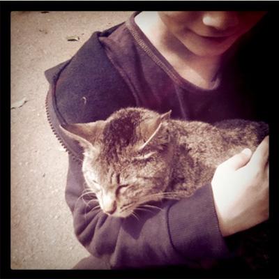 cat&ryo.jpg